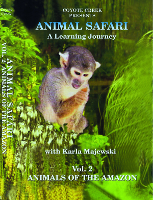 Animal Safari – Vol. 2 Animals of the Amazon