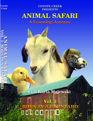 Animal Safari – Vol. 3<br/>Born in a Barnyard
