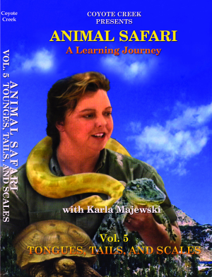 Animal Safari – Vol. 5<br/>Tongues, Tails, & Scales