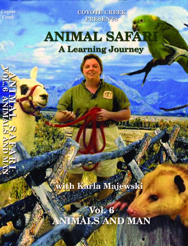 animal safari vol 6 Animal Safari Eight Volume Series