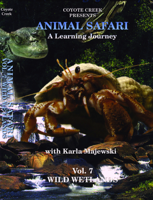 Animal Safari – Vol. 7<br/>Wild Wetlands
