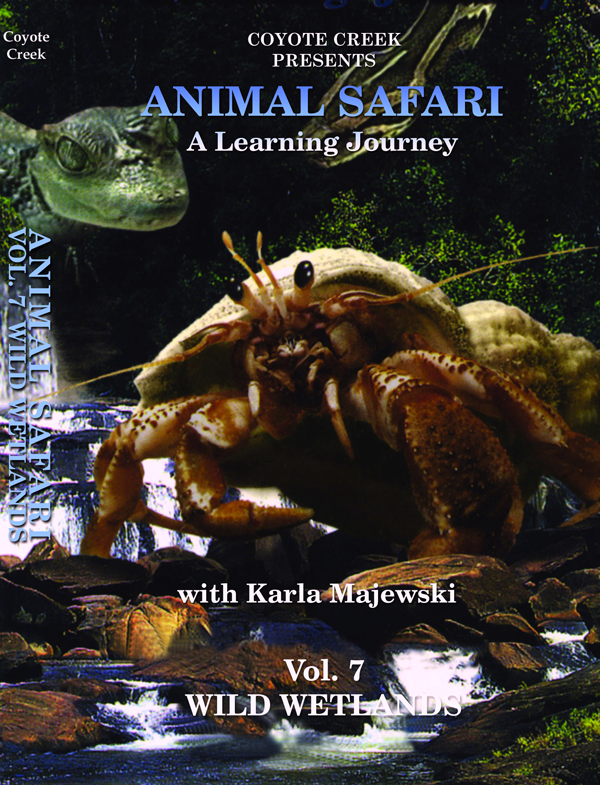 animal safari vol 7