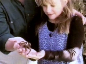 as2-tarantula
